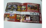 2010春に登場する新作ゲームのチラシ ― 『HUDSON×GReeeeN』や『MHF』などの画像