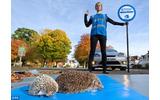 「ハリネズミを交通戦争から守ろう」 ― ソニックがハリネズミの保護に助力?の画像