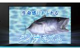 シリーズ史上最高の臨場感が味わえる『Fish Eyes 3D』最新映像公開の画像