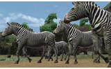 アニマルリゾート 動物園をつくろう!!の画像