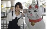小田急線の豪徳寺駅も近いんです。ここにも招き猫が 小田急線の豪徳寺駅も近いんです。ここにも招き猫がの画像