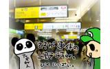 人であふれる上野駅公園口。パンダな人には会えなかったけど、多くのすれちがいがの画像