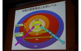 知性の階層構造と反射レベルの画像