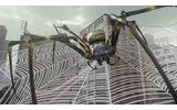 巨大な蜘蛛の巣の主、レタリウスの画像
