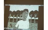 作品の例の画像