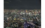 東京タワーもミニチュア模型のようですの画像