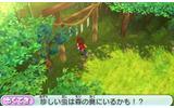 虫取りのために神社の裏の森の奥への画像