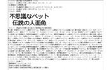 『シーマン』新作? 任天堂が「伝説の人面魚」なる2つの商標を出願の画像