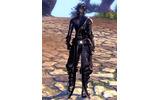 PC向けMMORPG『ブレイドアンドソウル』先行体験特典も付くパッケージ版の情報が明らかにの画像
