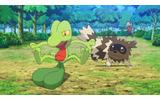 『ポケモン ORAS』新メガシンカポケモンが大集合する特別アニメが公開、主人公のCVは岡本信彦&花澤香菜の画像