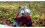 海外の『MH4U』でオトモアイルーがダンテに扮する『デビルメイクライ』とのコラボが決定の画像
