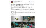 『スプラトゥーン』6月13日の午前11時より、新ブキ「シャープマーカー」が追加にの画像