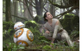 BB-8&レイ/『スター・ウォーズ/フォースの覚醒』- (C) 2015Lucasfilm-Ltd.-&-TMの画像