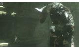 PS3『人喰いの大鷲トリコ』発売日延期にの画像