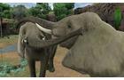 アニマルリゾート 動物園をつくろう!!