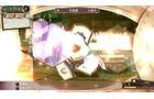 メルルのアトリエ ~アーランドの錬金術師3~