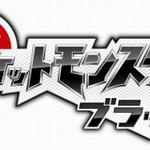 2010年TSUTAYA年間ランキング、ゲーム部門は『ポケットモンスター ブラック・ホワイト』がワンツーフィニッシュ