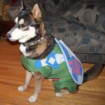 犬もハロウィンにはオシャレを ― 海外ゲームファンの作ったコスプレ集