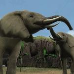 3DSの中で生き生きと動き回る動物たちを目撃『アニマルリゾート 動物園をつくろう!!』