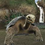 『アニマルリゾート』、「クロサイ」や「フタコブラクダ」など新たな動物が明らかに