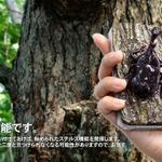 iPhone 4専用食品サンプルカバーシリーズにカブトムシ飛来……ついに厚さ45mm!