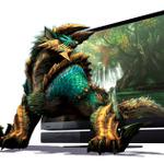 最適画質再現『モンスターハンターポータブル 3rd HD Ver.』とソニー「ブラビア」がタイアップ