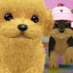 ペット育成シミュレーション最新作『かわいい仔犬3D』12月15日発売決定