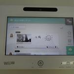 『Wii Street U』アップデート、「お気に入りの場所」登録やMiiverseでの共有が可能に