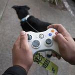 まるでお散歩ゲームをプレイしているみたい?古いXbox 360コントローラーで犬の巻き取り式リードを製作