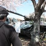 陸上自衛隊土浦駐屯地で戦車と一緒にお花見をしてきたの画像