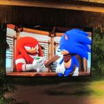 【E3 2014】TVアニメ化にあわせて新作『ソニック』が展示!Wii U版と3DS版をチェックの画像