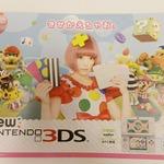 """""""きゃりーぱみゅぱみゅ""""が表紙の「New 3DS」パンフレット配布中、全体的に「きせかえ」推し"""