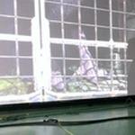 『人喰いの大鷲トリコ』が東京ゲームショウに登場?―「ゲームとは違うかたちで」