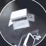ダンボール箱を被った泥棒が韓国に出没、監視カメラが捉えたスニーキング映像に「!」