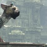 『人喰いの大鷲トリコ』開発は順調も「情報公開には制限」― SCE吉田氏語る