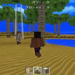 【Wii U DL販売ランキング】 『キューブライフ:アイランドサバイバル』初登場5位、『Minecraft』は首位をキープ(2/8)