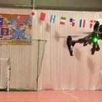 「ニコニコ超会議2016」会場は幕張メッセ+QVCマリンフィールドに…刀鍛治の参戦や「ドローン大運動会」実施も決定の画像