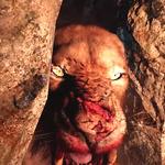 今週発売の新作ゲーム『Far Cry Primal』『仮面ライダー バトライド・ウォー 創生』『雷電V』他