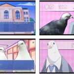 PS4/PS Vita『はーとふる彼氏 / Holiday Star』日本でも配信開始!鳥と恋するADVの画像