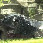 ソニーの関係者が『人喰いの大鷲トリコ』の現況を報告、E3出展は・・・?